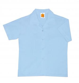 9481_blue