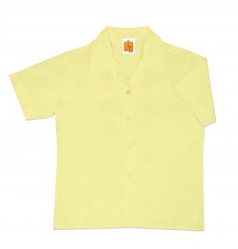 9481_yellow