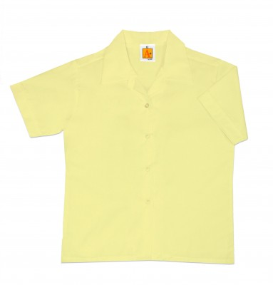 9481_yellow_plus